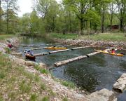 Die nächste Herausforderung – eine Fischtreppe bei Neuhausen, einige sind sie einfach gefahren