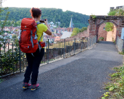 Zielankunft der Fernwanderung Taubertal-Panoramaweg in Wertheim