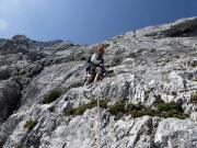 Bereich Alpen