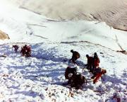 Zum Glück durften wir mit den Grindelwalder Bergführern abstgeigen
