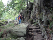 Auf dem Weg von den Schrammsteinen zum Großen Winterberg, hier kurz nach der Steiganlage Zurückesteig
