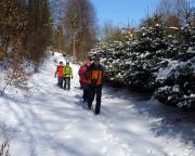 Beginn unserer Tour vom 16.03.2013  Abstieg von Mittelndorf zum Forsthaus