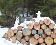 Königsweg im Elbsandsteingebirge, der linke Kollege symbolisiert das tatsächliche Fest ;)