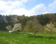 Frühlingsstimmung am Elbufer im Kurort Rathen
