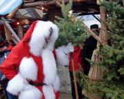So großartig, wie der Festungsweihnachtsmarkt ist auch der dort stolzierende Weihnachtsmann