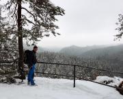 Erster Höhepunkt unser Wandertour – die Aussicht vom Taubenstein über der Kirnitzschklamm