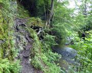 Der Flößersteig im Bereich Ostrauer Mühle