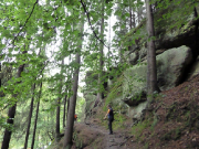 Nicht immer geht es unmittelbar am Fluss entlang, hin und wieder führt der Steig weiter oben an den Felsen entlang