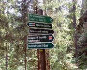 Nur etwa 400 m weiter trifft man auf diesen Wegweiser.  Wer den Abstecher auf das Herrmannseck wagen will, sollte den steilen, engen Aufstieg und den gemütlichen Abstieg, zurück zu diesem Punkt, wählen.