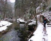 Nun geht es etwa 2,5 km immer am Ufer der Kirnitzsch entlang