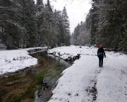Bei etwa km 9 weitet sich das Kirnitzschtal und man erreicht den tiefsten Punkt dieser Rundwanderung
