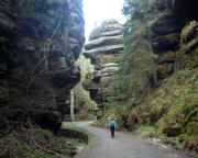 Rathen - Wehlen - Waldidyll, unterwegs in Richtung Höllengrund