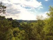 Elbsandsteingebirge im Mai_13