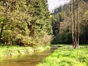 Elbsandsteingebirge im Mai_21