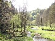 Elbsandsteingebirge im Mai_22